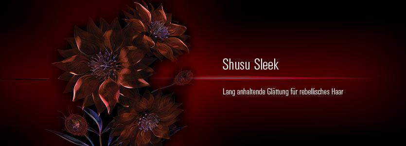 Shu Uemura Shusu Sleek