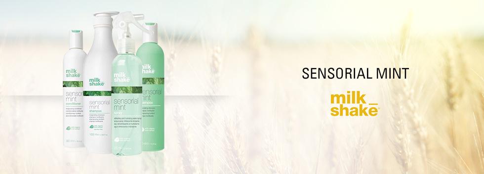 milk_shake Sensorial Mint
