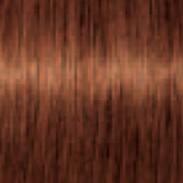 Schwarzkopf Igora Royal Absolutes 6-70 Dunkelblond Kupfer