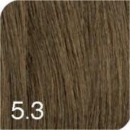 Revlon Revlonissimo Colorsmetique Color & Care 5,3 Hellbraun gold 60 ml