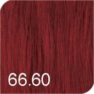 Revlon Revlonissimo Colorsmetique Color & Care 66,60 Rot intensiv 60 ml