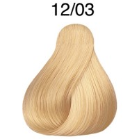 Londa Color 12/03 Spezialblond natur-gold 60 ml
