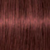Schwarzkopf Igora Royal Absolutes 6-80 Dunkelblond Rot