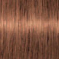 Schwarzkopf Igora Royal Absolutes Age Blend 7-710 Mittelblond Kupfer Cendré 60 ml