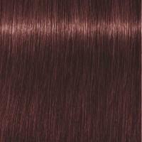 Schwarzkopf Igora Royal High Power Browns B-9 Braun Violett 60 ml