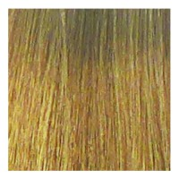 Eslabondexx Color 10 lichtblond extra 100 ml