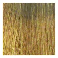 Eslabondexx Color 10 lichtblond extra 100 ml
