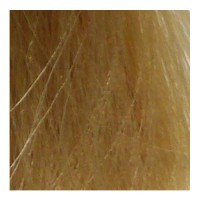 Eslabondexx Color 10.3 lichtblond extra gold 100 ml