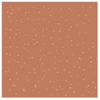 Lilaque Colour Coats Coachalla Vibes 8,5 ml