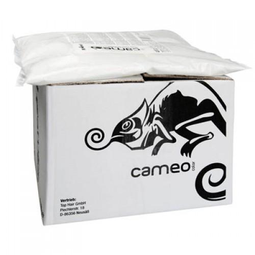 Cameo Color Blondierpulver Karton WEISS 4 X 440 g