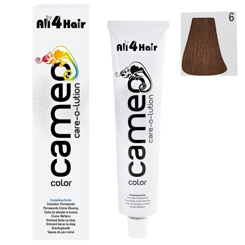 Cameo Color Haarfarbe 6 dunkelblond