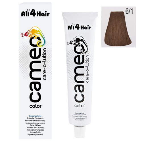 Cameo Color Haarfarbe 6/1 dunkelblond asch 60 ml