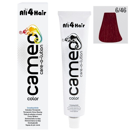 Cameo Color Haarfarbe 6/46 dunkelblond intensiv rot violett