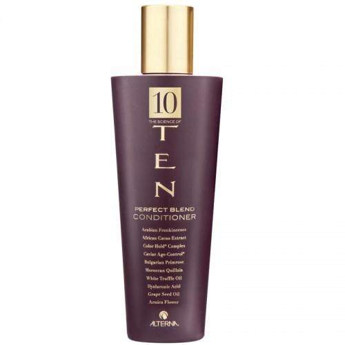 Alterna Ten Perfect Blend Conditioner 250 ml