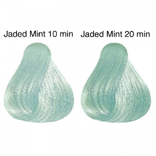 Wella Color Touch Instamatic Jaded Mint 60 ml