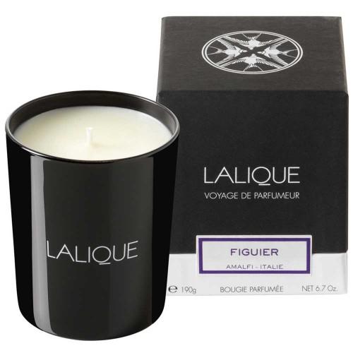 Lalique Figuier - Amalfi Candle 190 g