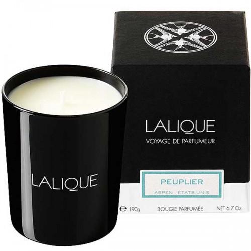 Lalique Peuplier - Aspen Candle 190 g