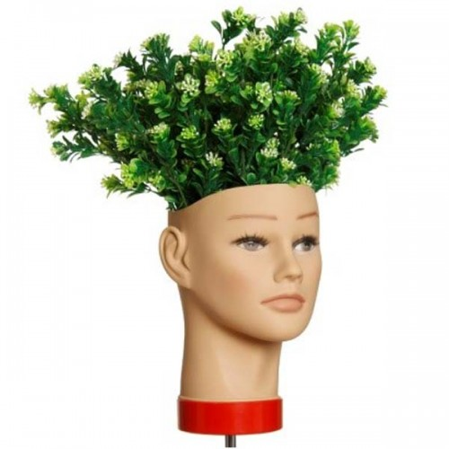 L'IMAGE Planter's Head