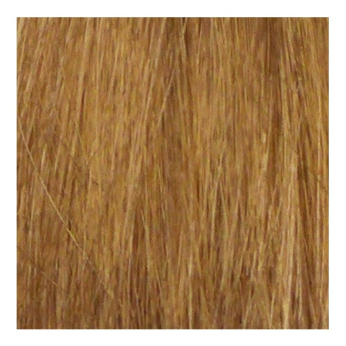 Eslabondexx Color 9.13 lichtblond asch gold beige 100 ml