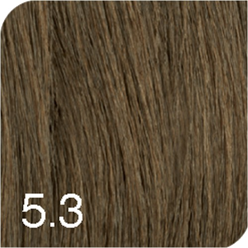 Revlon Young Color Excel 5,3 Golden Chestnut 70 ml