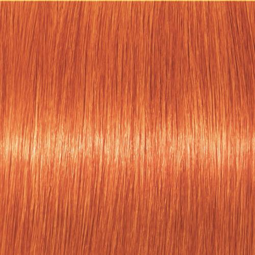 Schwarzkopf Igora Vibrance 0-77 Kupfer Konzentrat 60 ml