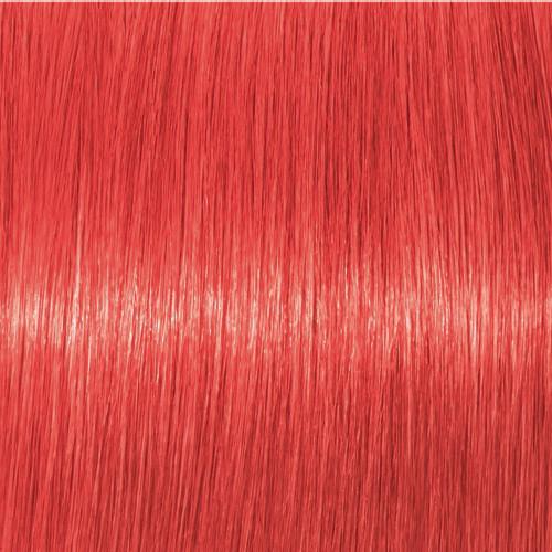 Schwarzkopf Igora Vibrance 0-88 Rot Konzentrat 60 ml