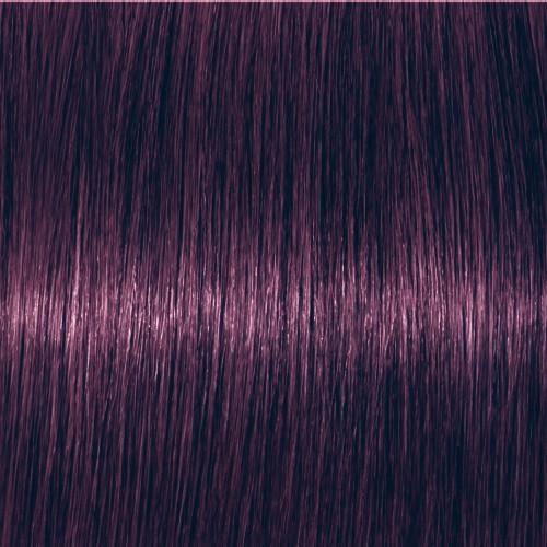 Schwarzkopf Igora Vibrance 0-99 Violett Konzentrat 60 ml