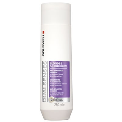 Goldwell Dualsenses Blonde & Highlights Shampoo