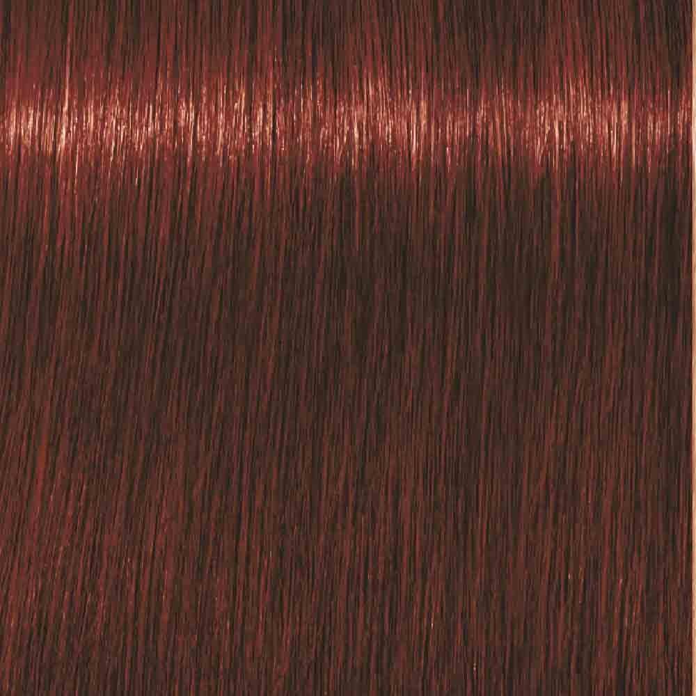 Schwarzkopf Igora Royal High Power Browns B-8 Braun Rot 60 ml