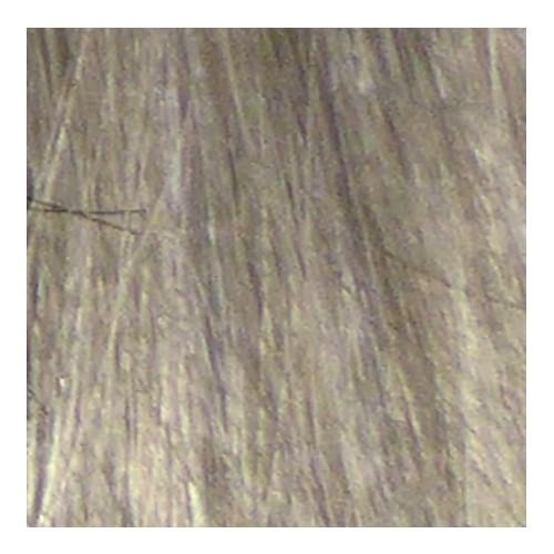 Eslabondexx Color 9.1 lichtblond asch 100 ml