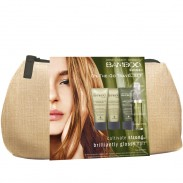 alterna-bamboo-shine-travel-set-on-the-go