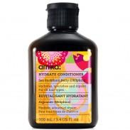 amika Hydrate Conditioner 100 ml