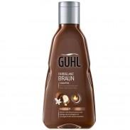 Guhl Farbglanz Braun Shampoo 250 ml