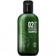 Great Lengths BIO A+O.E. 02 Restructuring Shampoo 250 ml