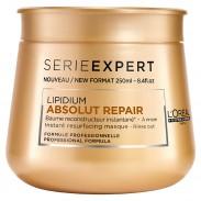 L'Oréal Professionnel Série Expert Absolut Repair Lipidium Instant Reconstructing Maske 250 ml