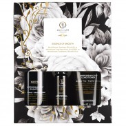 Paul Mitchell Awapuhi Wild Ginger Indulge & Smooth Gift Set
