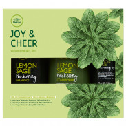 Paul Mitchell Joy & Cheer Gift Set - Lemon Sage