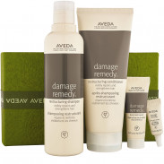 AVEDA A Gift of Stronger Hair