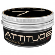 Attitude Moulding Clay 100 ml
