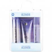 Paul Mitchell Platinum Blonde Collection Trio
