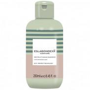 Eslabondexx Clean Care Restructuring Shampoo 250 ml