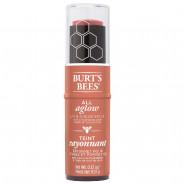 Burt's Bees Lip & Cheek Stick 1254 Peach Pond 9,07 g