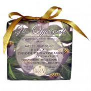 Nesti Dante Gli Offininali Ivy & Clove 200 g