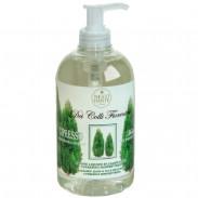 Nesti Dante Colli Fiorentini Cypress Tree Liquid Soap 500 ml