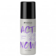 Indola Act Now! Strong Hairspray 50 ml