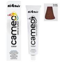 Cameo Color Haarfarbe 7/75 mittelblond braun-mahagoni 60 ml