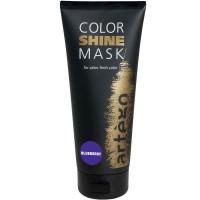 Artego Color Shine Mask Blueberry 200 ml