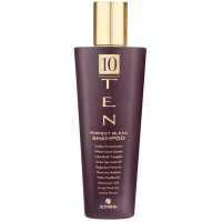 Alterna Ten Perfect Blend Shampoo 250 ml