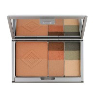 AVEDA Envirometal Compact Total Face Compact