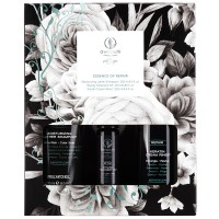 Paul Mitchell Awapuhi Wild Ginger Indulgence Gift Set Repair